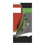 Magyar Sportújságírók Szövegtsége